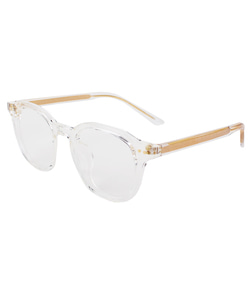 NORMAL SUNGLASSES (CLEAR)
